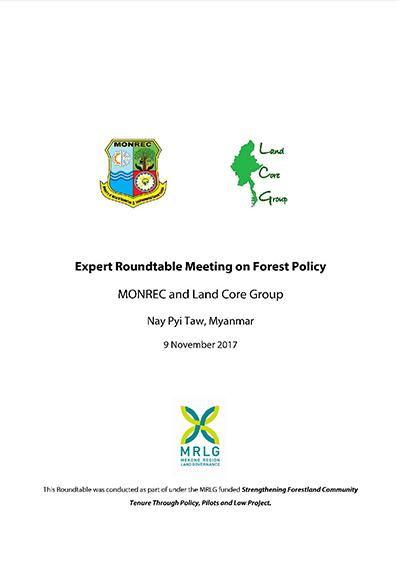 Expert round table meeting on forest policy