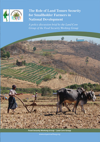 2012 Role of Land Tenure Security for Smallholder Farmers