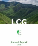 LCG Annual Report 2018